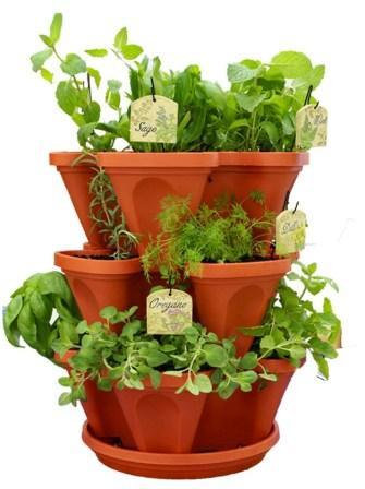 Terra-Cotta-Herb-Garden