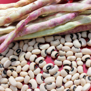 black-eyed-peas-w-pod