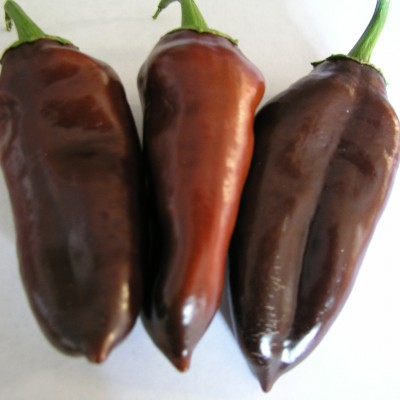 Sweet Chocolate Peppers