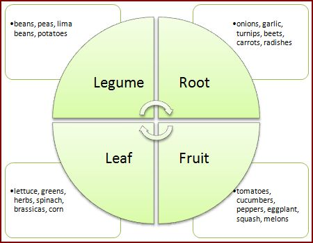 Crop rotation guide growin crazy acres