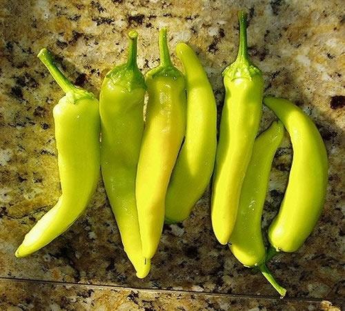 Hot Banana Pepper - Growin Crazy Acres-7876
